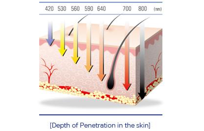 Độ sâu của iplPenetration - cellec